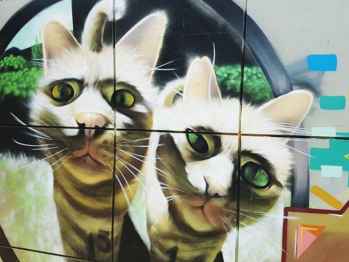 Street Art/Graffiti Graffiti Cats Art, Drawing, Creativity Up Close Street Photography