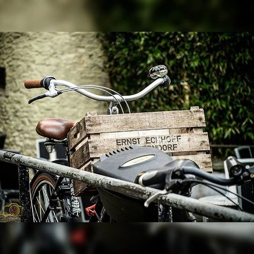Fahrrad Transport Kiste Testbild Picoftheday Bestoftheday Bike Fahrradkorb Grammasters3