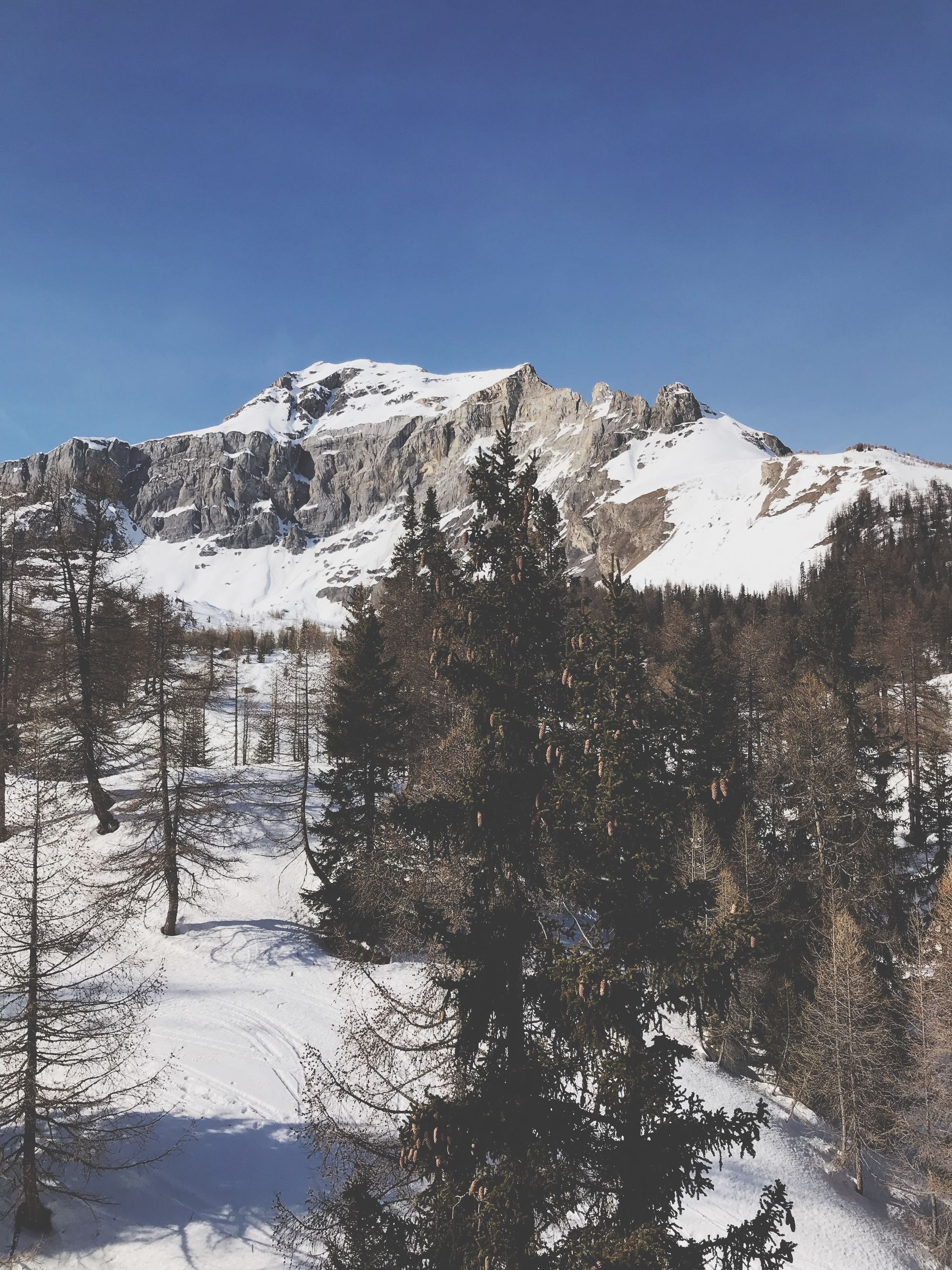 snow, winter, cold temperature, sky, mountain, beauty in nature, scenics - nature, tranquility, tranquil scene, plant, nature, tree, clear sky, snowcapped mountain, non-urban scene, no people, day, environment, blue, outdoors, mountain peak