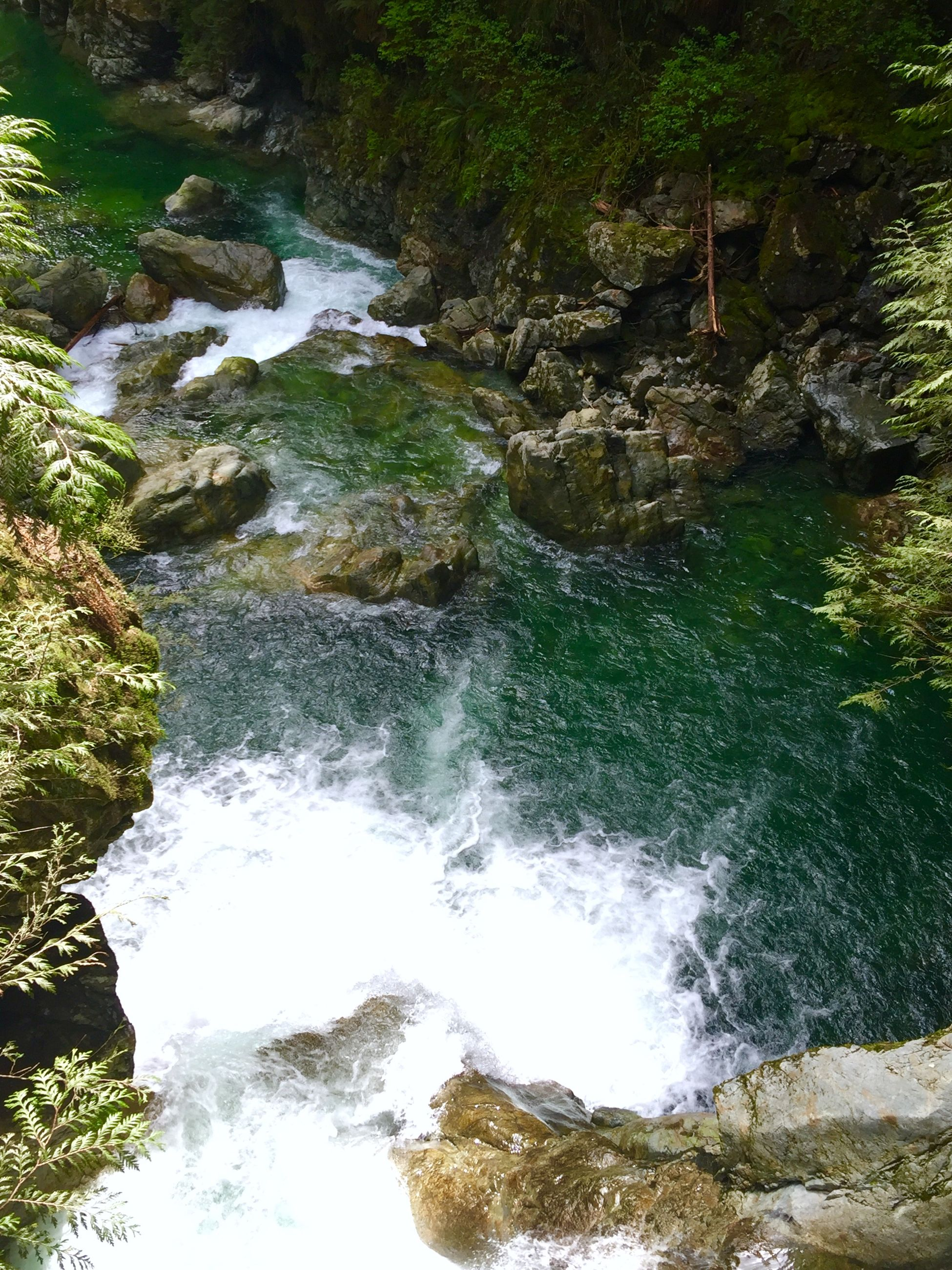water, flowing water, waterfall, rock - object, flowing, stream, nature, motion, forest, beauty in nature, scenics, river, tree, tranquility, high angle view, tranquil scene, long exposure, day, plant, outdoors