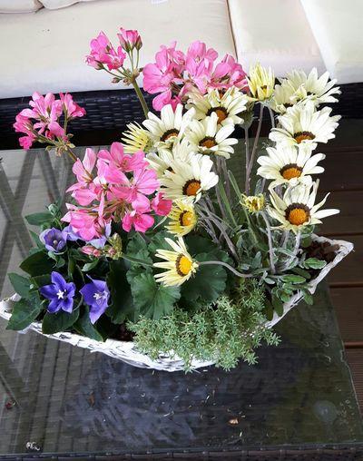 Blumenkorb Blumenkorb