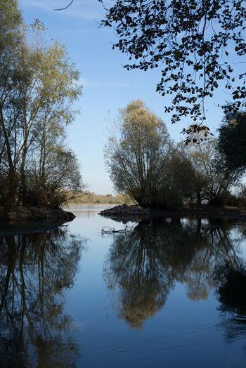 Autumn Clear Sky Herbst In Seinen Schönsten Farben Rhein Rheinufer Rhine Riverside Blue Sky Lake