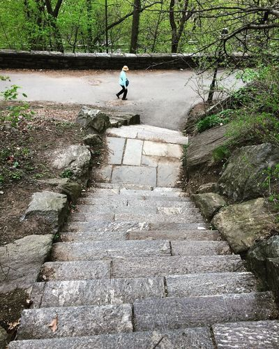 Inwood Hill Park Cloisters Museum Cloisters Park Stairs_steps