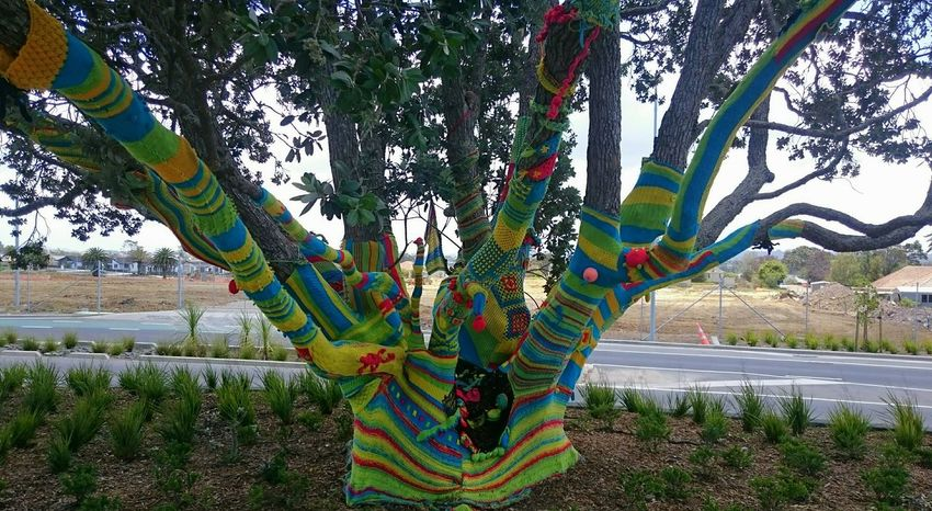 This was a community project by local crochet and knitters. Me and my kids were in the area doing a quick cache. Had to pay a visit to this gorgeous tree art :) Yarn Bombing, Tree Art Knitting Knitting Graffitti Crochet Street Art Sony Xperia Z3 Compact Hugging A Tree Colours Check This Out