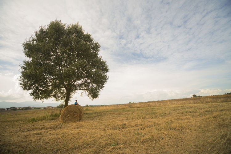 Hay Bale Wheat Wheat Field Innocence Bale  Children Agriculture Beauty In Nature Childhood Children Only Cloud - Sky Day Environment Field Land Landscape Nature Non-urban Scene Outdoors Plant Scenics - Nature Sky Tranquil Scene Tranquility Tree Relaxed Moments A New Beginning Calm Relaxing Moments Scenics