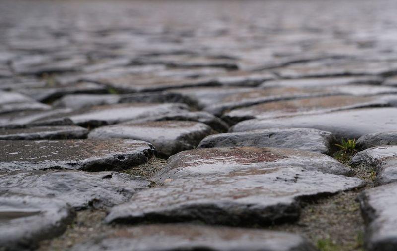 Close-up of wet cobblestone during rainy season
