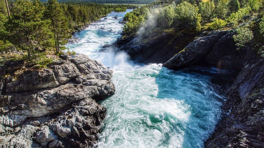 Wild Water, Hindsaeter , Norway 🇳🇴 Nature Water Scenics Beauty In Nature Tranquility Waterfall Rock - Object Outdoors Motion Tranquil Scene Environment Idyllic Forest Day No People Long Exposure Tree Freshness
