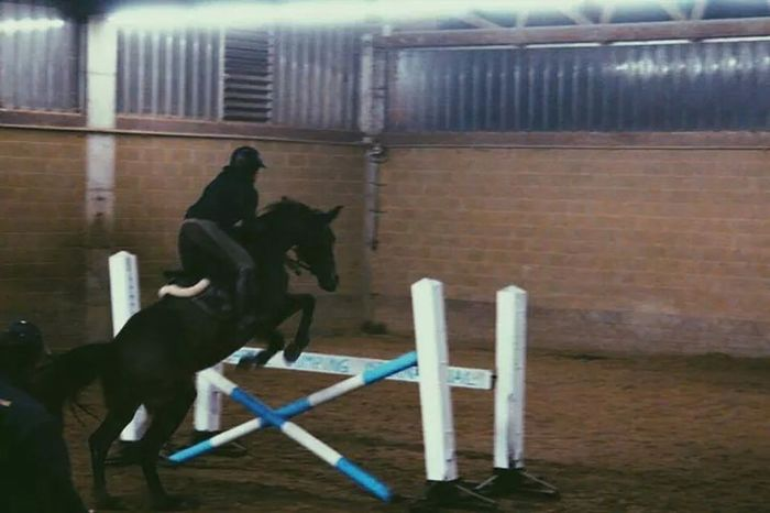 Horsejumping Training Check This Out Taking Photos