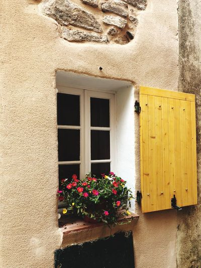 SouthFrance EyeEmNewHere Architecture Flower Flowering Plant Built Structure Plant Window Building No People Building Exterior Day EyeEmNewHere