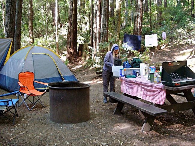 Camp Camping Redwood Trees Picnic Tables Tent Outdoors Cooking Camp Site Connected By Travel