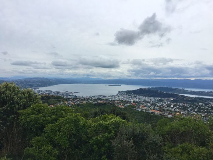 Landscape view of Wellington and Harbour Wellington City New Zealand Wellington  Landscape Sky Cloud - Sky Cityscape City Outdoors