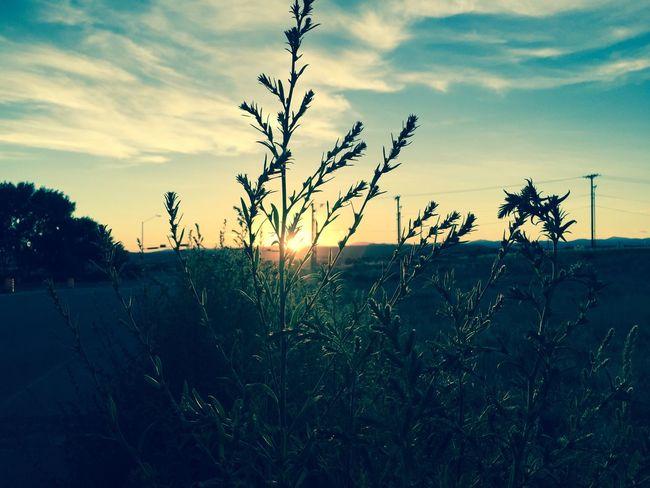 Newmexico Nature On Your Doorstep Beautiful Nature Sunset