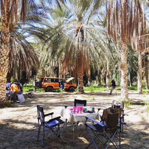 Spanish group in oasis of Elfaouar Tunisia Tunisia_with_love Tunisia <3 Tunisia❤ Tunisie Tunisie Terre D'accueil El Faouar Tunisie El Faouar Tunisia Palm Palm Leaf Palm Tree Palmtrees Plams🌴 Kebili Kebilli Tunisia❤ Tree Sand Chair Sky Summer Exploratorium Adventures In The City