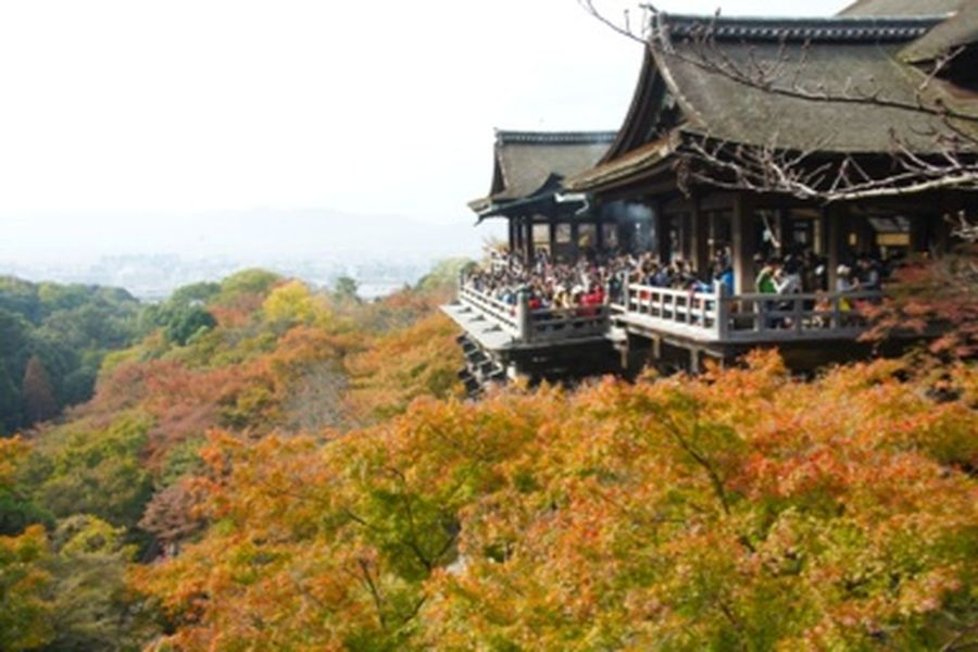 Kyoto*Japan 清水寺 日本 京都 Japan Kyoto Kiyomizu-dera KiyomizuTemple Autumn Autumn Leaves Fall Garden
