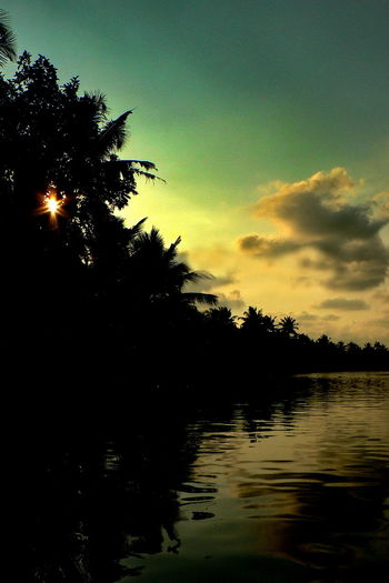 The captivating Beauty of Kerala!! Beautiful Silhouette Beautiful Sunset Clouds Coconut Coconut Trees Kerala Kerala India Kumarakom Lake Natural Light Natural Scenery Palm Palm Trees Scenery Scenery_collection Scenic Silhouette Silhouette Sunset Sunset The Traveler - 2018 EyeEm Awards