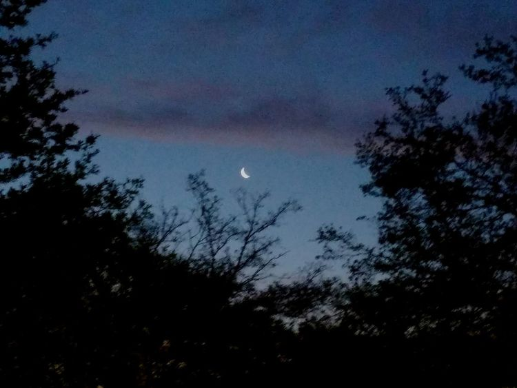 A Moon Sun Rise Sky Moon Beauty In Nature Nature Space And Astronomy No People Tranquility Outdoors