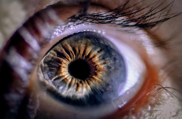 Close-up Day Eyeball Eyelash Eyesight Human Body Part Human Eye Iris - Eye Looking At Camera Macro One Person Outdoors People Portrait Real People Sensory Perception
