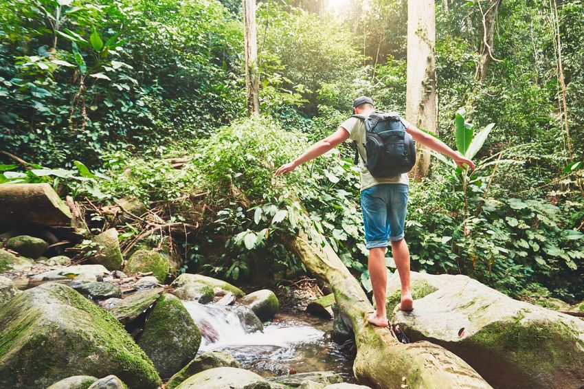 Hiker crossing river in tropical rain forest - Borneo, Malaysia Adventure Backpacker Backpacking Balance Crossing Enjoying Life Enjoyment Forest Hikking Jungle Lifestyles Man Men Nature Outdoors People Rainforest River Tourism Tourist Tree Tree Trunk Trip Tropical Climate Trunk
