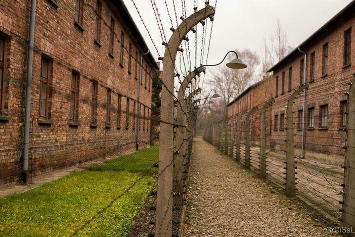 Auschwitz  Auschwitz Birkenau Concentrationcamp Poland Death Life Ww2 The Human Condition Neveragain History Jewish NAZI Reflection
