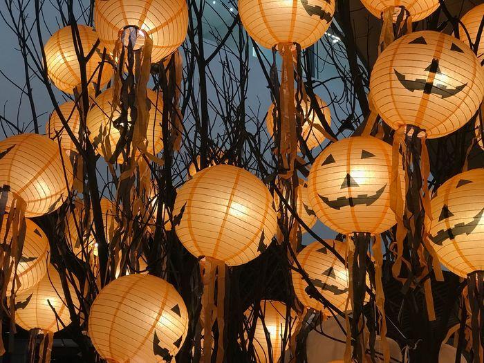Low Angle View Of Illuminated Jack O Lanterns Hanging At Night