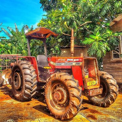 Ilivewhereyouvacation Tractor Plough Grenada Machinery Agriculture Islandlivity Ig_caribbean_sea Instagramhub Ig_caribbean Westindies_nature Westindies_color Wu_caribbean Hdrstylesgf Hdrzone Shootinhtheglobe Scenery Ourbestshot Allshots_