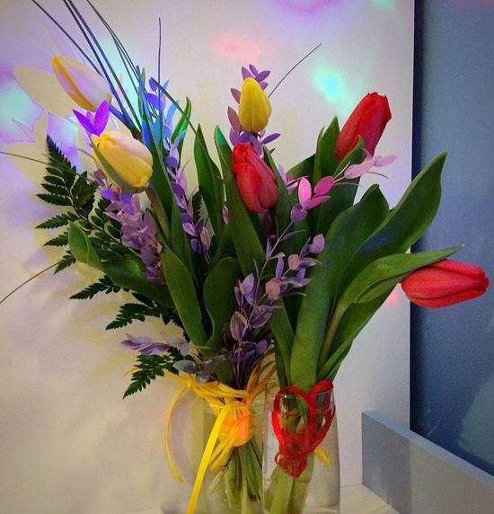 Women's Day Happy Time 😚 😚 😚 Hello World