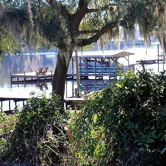 Clay County, Florida Florida Spanishmoss Sunlight Beautiful Sun Fleming Island Fl Secret Hideaway The 00 Mission No People On The Water