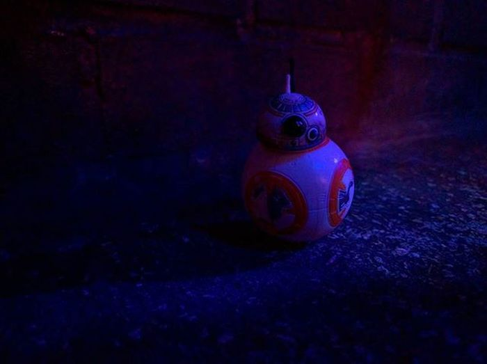 He might be little, but BB-8 party's hard 🎉 Bb8 Party Starwars Starwarstheblackseries TheForceAwakens Theforce R2D2 C3p0 C3po Droids Finn Rey Hansolo Generalleia