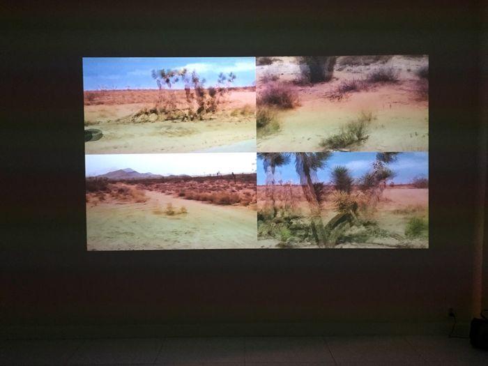 Art Video Desert