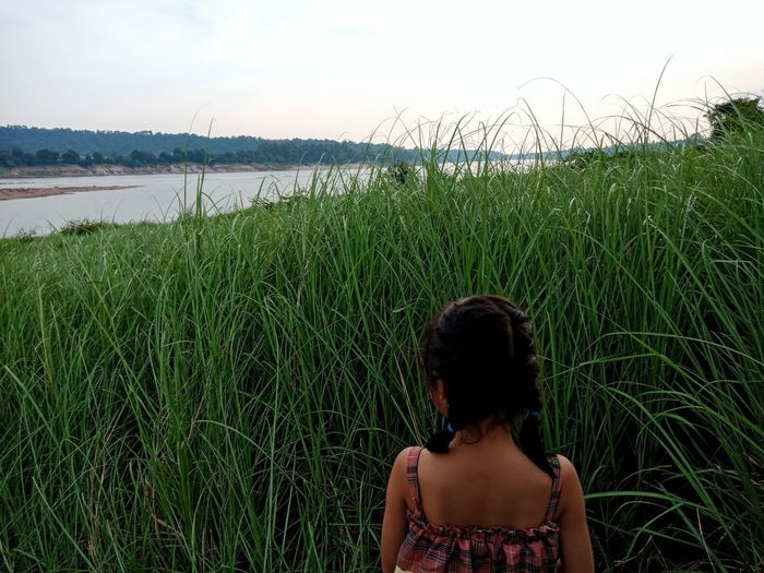 Rear view of girl standing against grass