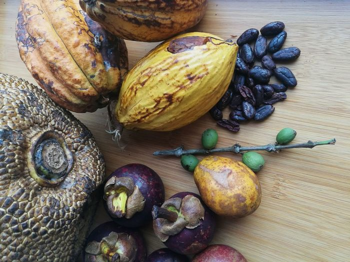 Nature Equador Tropical Healthy Eating Sao Tome And Principe Food Food And Drink Tropics Africa Tropical Plants Tropical Climate Sao Tome E Principe Fruit Jaca Fruits Sao Tome Cacau Chocolate Manga Mango Mangosteen Fruit Mangostao Coffee Cafe Berries