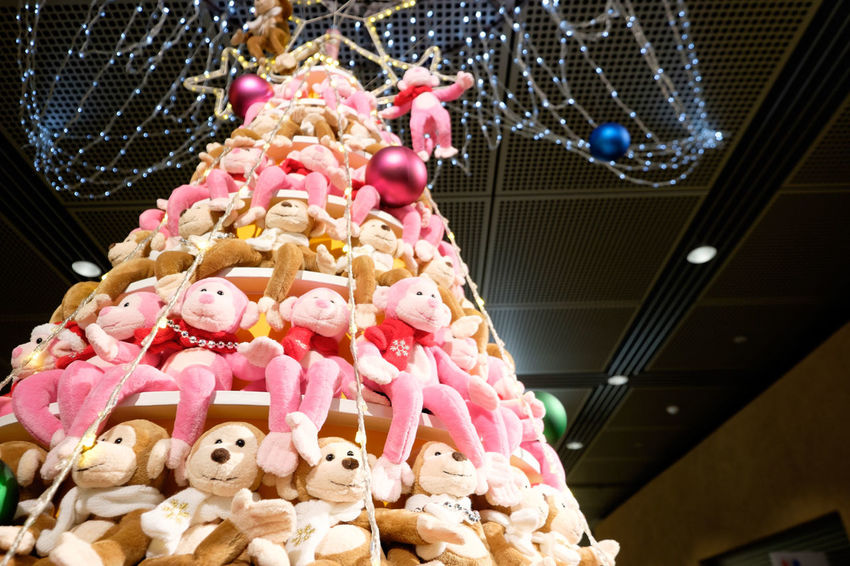 Christmas Christmas Tree Dolls Fujifilm Fujifilm X-E2 Fujifilm_xseries Japan Marunouchi Monkey Tokyo Tokyo International Forum Toy Xmas Xmas Decorations Xmas Tree ぬいぐるみ 丸の内 東京国際フォーラム 申年