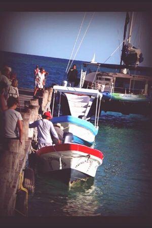Puerto Morelos Cancun Taking Photos Travel
