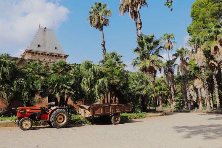 Spain botanic