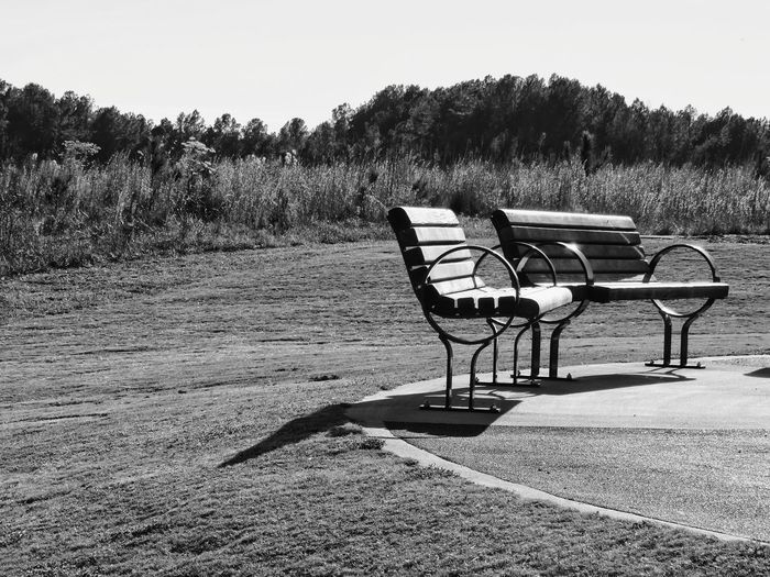 benches Bnw_friday_eyeemchallenge_benches Outdoors Plant Plant Life Beauty In Nature Sunlight Streams Of Light Treeline In Distance Pattern, Texture, Shape And Form Nature Collection Trees And Nature Treelined Path Sunset Oil Pump Rural Scene Sky Animal Themes Landscape Tranquility Tranquil Scene Silhouette Outline Scenics Remote Streaming Cultivated Land Plowed Field Growing