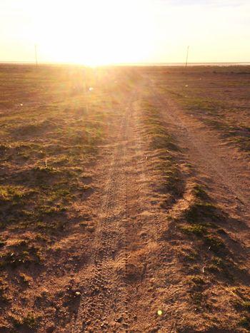 دقائق مع الطبيعة كفيلة بتغير مزاجگ 💚 Libya IPhoneography Taking Photos Photographer Hi World IPhone 5S Libya Misurata Libya Misurata Tripoli ❤ First Eyeem Photo