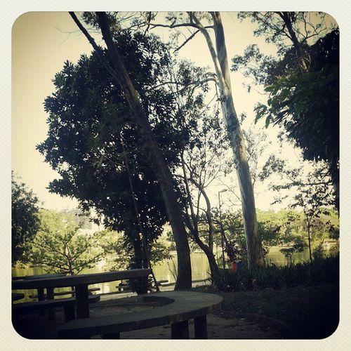 Taquaral lindo como sempre! Como não amar Campinas?? HEUEHEUEHE Parque  Taquaral Campinas Paz