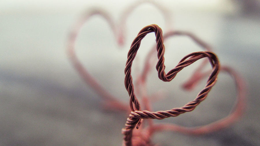 Heart Shape Close Up No People Indoors Macro Beauty Creative Ideas Photography