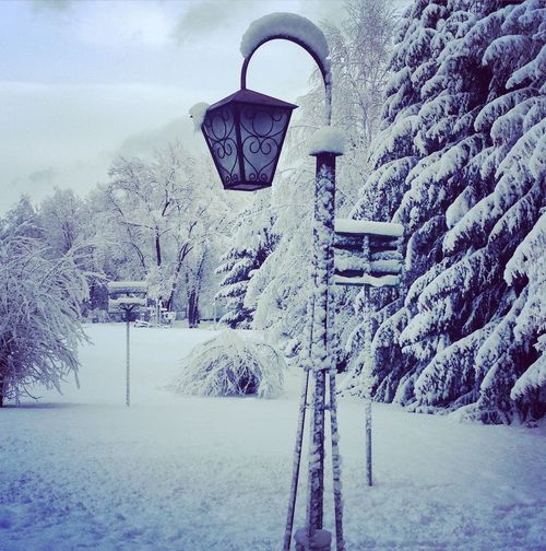 Wintertime Fresh Air... White Background Need More Love Love Taking Photos Hello World Enjoying Life Snow Day