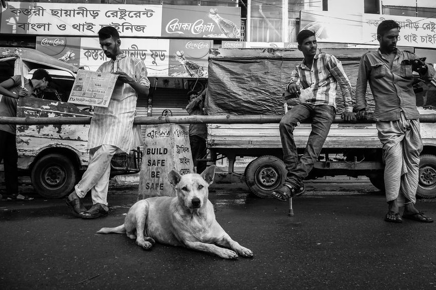 city life at the morning 1st Hour Bangladesh Casual Clothing City Life Day Dhaka Dog Lifestyles Moring Outdoors People Photography Reading Newspaper Rhsumon Sitting