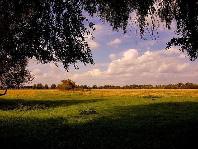 Landscape Tranquility Scenics Cloud - Sky Rural Scene Tranquil Scene Summer landscape