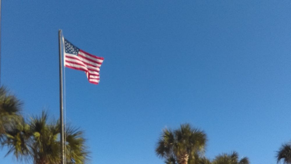 Beachlife Palm Trees American Flag True Patriot Sky Blue Skys Clear And Calm Clear Sky Florida Skies No People Low Angle View Stars And Stripes Flag