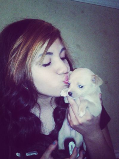 Aw This Puppy Que Cutee^_^ <3