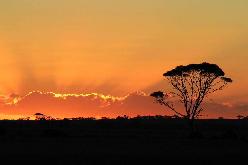 Australia Beach Enjoying Life Enjoying The View Life Is Beautiful Nature Sunset West Australia Landscapes With WhiteWall