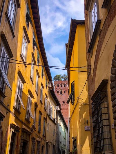 Lucca Italy Built Structure Architecture Building Exterior Building Sky Cloud - Sky Low Angle View Residential District Nature No People Yellow Day Window Outdoors City Hanging Sunlight Lighting Equipment Travel Destinations Travel
