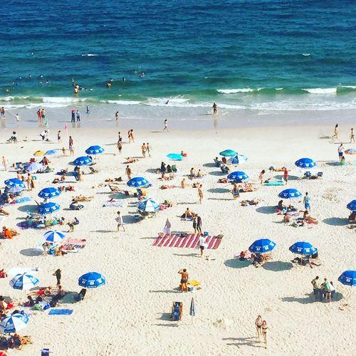 Beach Sea Land
