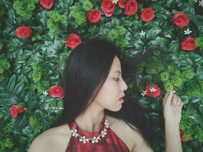 Red Roses Live For The Story Love Close-up Beautiful Woman Flower