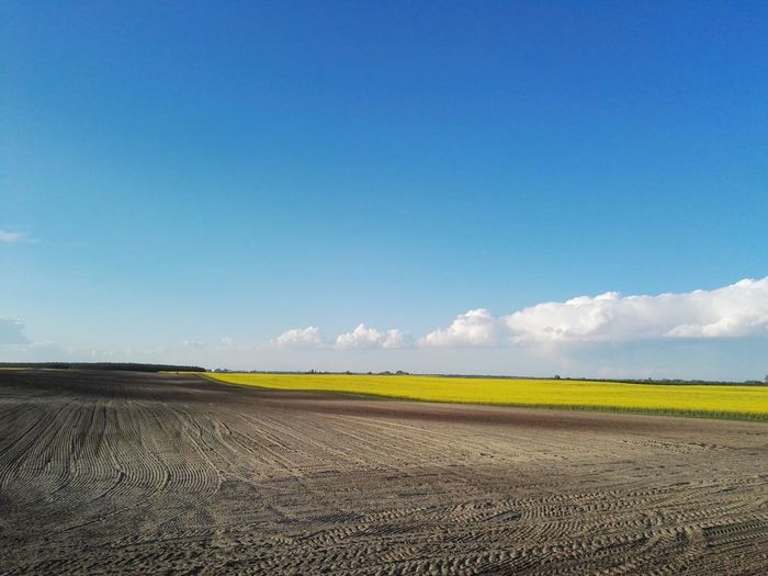 Field Landscape Nature Rural Scene Outdoors No People Beauty In Nature Blue Sky Agriculture Day