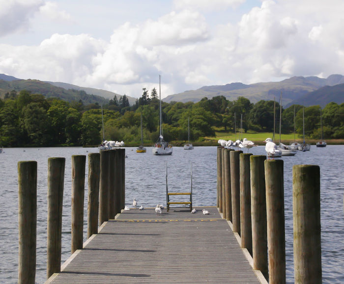 The view along a small wooden jetty on Windermere in the Lake District National Park Cumbria England UK EyeEmNewHere Lake District National Park Beauty In Nature Cloud - Sky Day Jetty Lake Mountain Nature No People Outdoors Pier Scenics Sky Tree Water Windermere