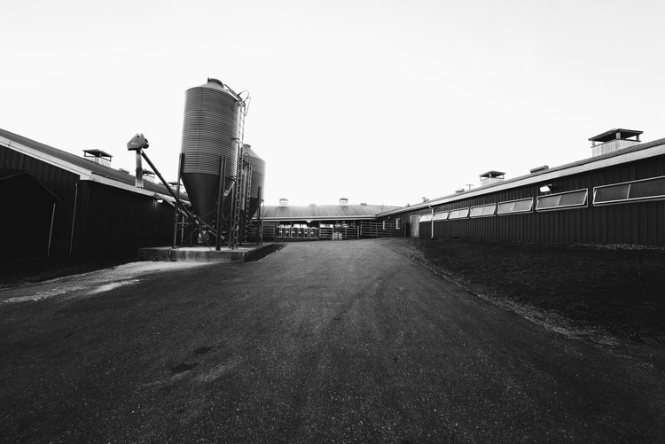 Check This Out Fine Art Photography Connecticut Light And Shadow Black And White Blackandwhite Photography Farm Taking Photos Countryside Cowfarm Black & White Hello World